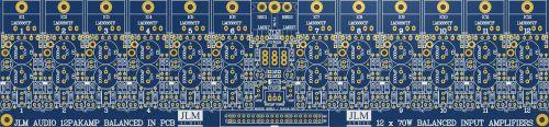 12PAKAMP Blue PCB